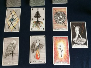 Reading from The Wild Unknown deck.