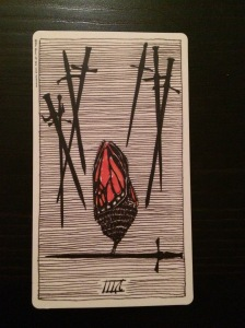 The Eight of Swords from The Wild Unknown tarot.