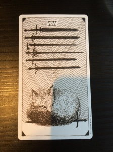 The Seven of Swords from the Wild Unknown tarot.